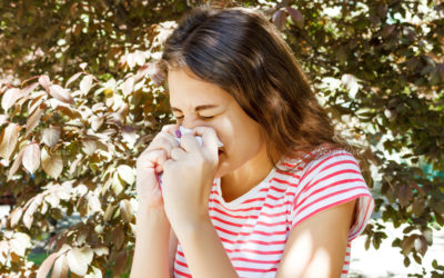 How does salt therapy help for Sinusitis?